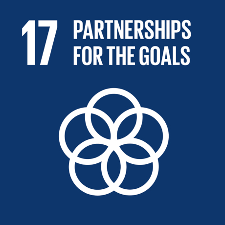 Textual image showing: Partnerships for the goals